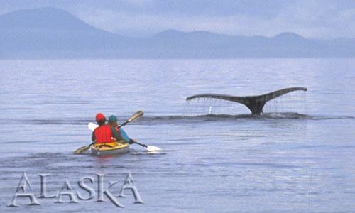 Alaska Adventure Travel Pictures