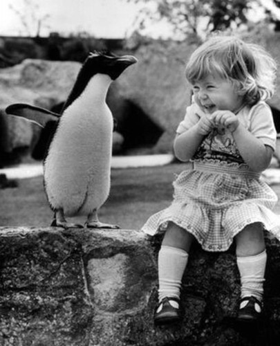 A Penguin and a Girl Baby